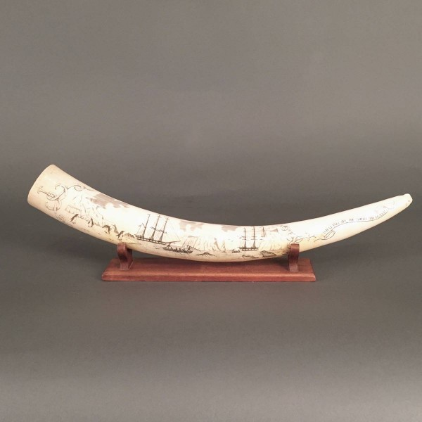 Antique Engraved Walrus Tusk | De Grande Early Decorative Objects